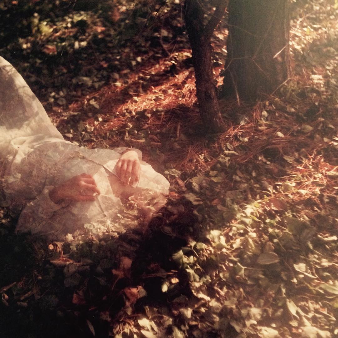 Rebecca Cairns – Autumn Leaf