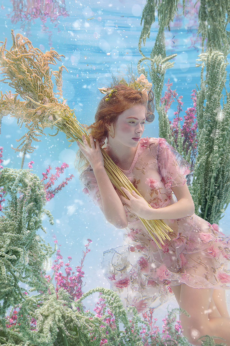 Renaissance – Beth Mitchell